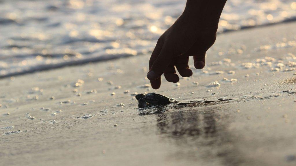 Binlercesi denizle buluştu