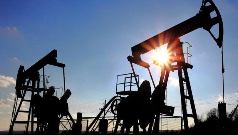 Yurt içi petrol üretimi