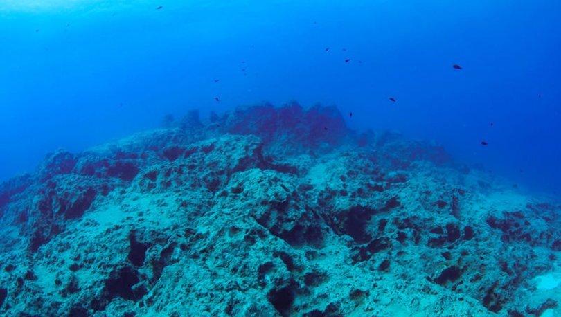 Neptün amforaları