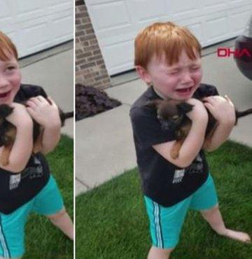 Yavru köpeğine kavuşan çocuğun sevinç gözyaşları!
