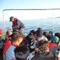 İzmir'de 248 kaçak göçmen yakalandı