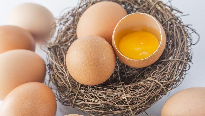 yumurta günü