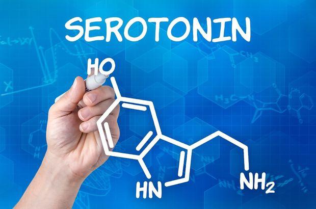 Serotonin içeren gıdalar?