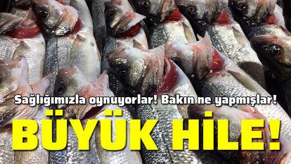 balıkta hile