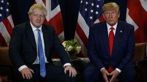 Johnson, Trump'ın seçim ittifakı tavsiyesini reddetti