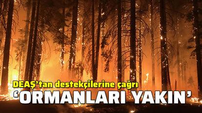 deaş orman yangınları çıkaracak