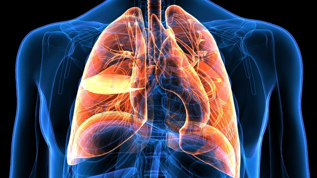 Akciğer kanserinin belirtileri - Haberler