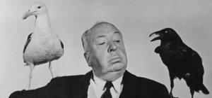 Hitchcock'la 'Kara Hafta'