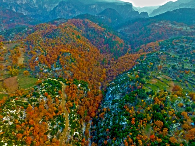 Karanlıkdere Kanyonu'nda sonbahar