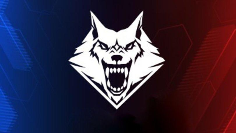 Wolfteam Türkiye