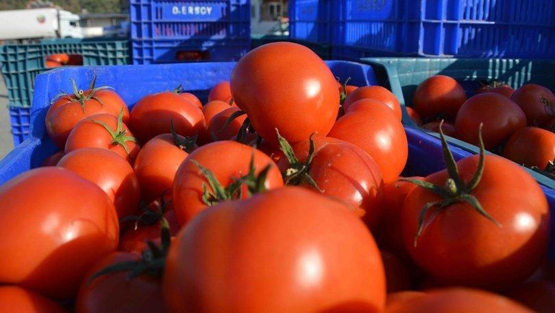 Kasım ayı zam şampiyonu domates