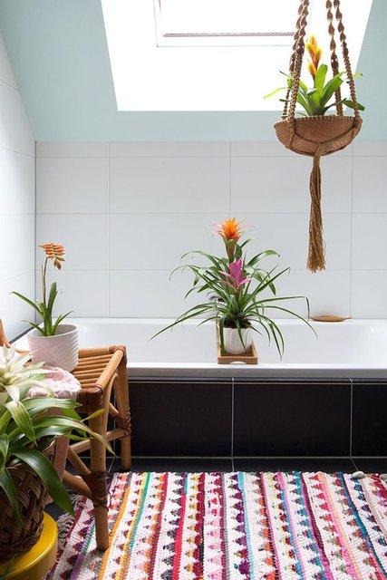 Banyoda yetiştirebileceğiniz iç mekan bitkileri