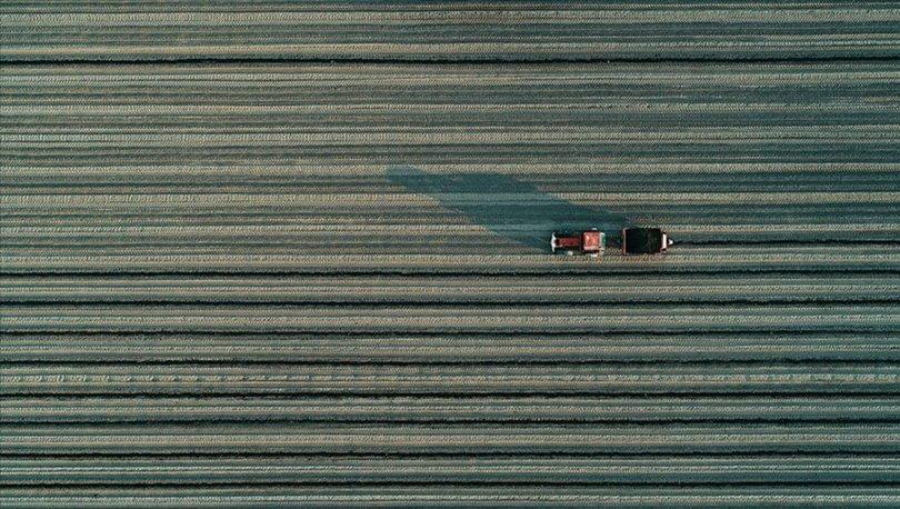 Stratejik tarım ürünleri
