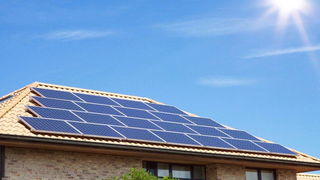 Yeşil enerji sigortası