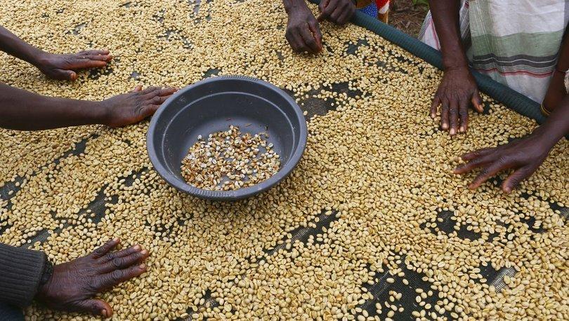 Dünya Bankası'ndan Afrika'ya 53 milyar dolar