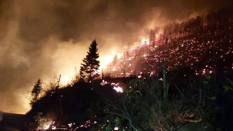 Karadeniz'de 26 noktada orman yangını