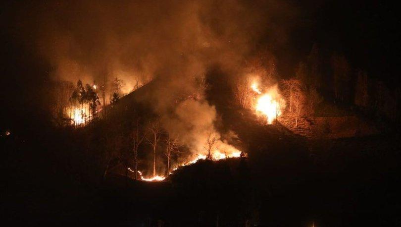 Rize ve Samsun'da örtü yangınları