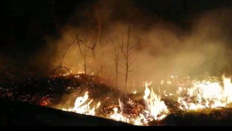 Son dakika! Trabzon yangınlarıyla ilgili 7 kişiye soruşturma