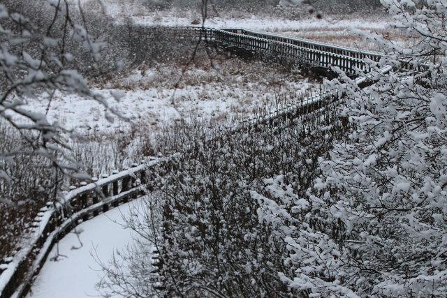 Kar Abant'ı beyaza bürüdü