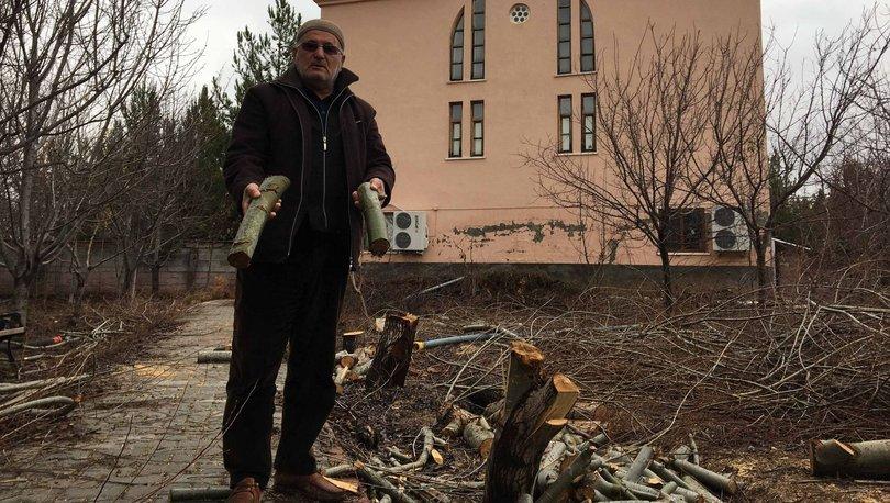 Ağaçları kesen imam