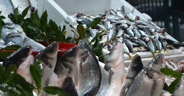 Balık azlığı fiyatları yükseltti