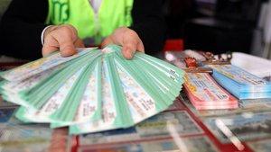 Milli Piyango bilet sorgulama ekranı