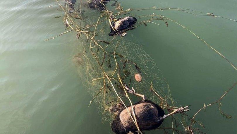 sapanca gölü hayalet ağ katliamı
