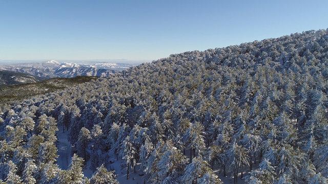Kaz Dağları'nda kartpostallık kış görüntüleri