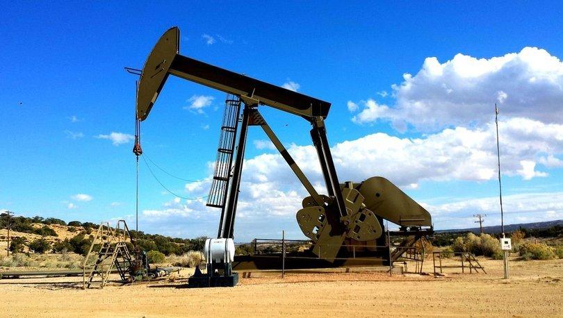 TPAO'ya 9 petrol arama ruhsatı verildi