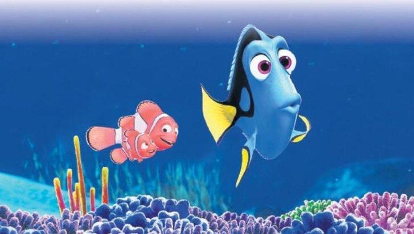 Kayıp Balık Dori filmi oyuncuları kimler? Kayıp Balık Dori filmi konusu nedir?