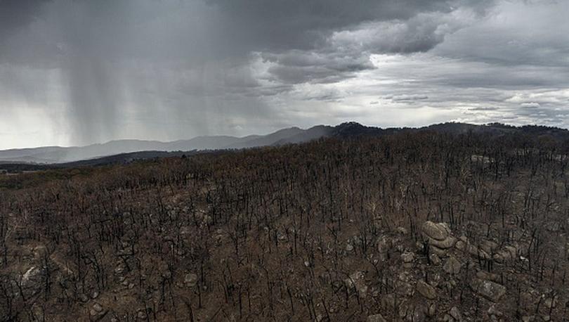 4 aydır yangınların sürdüğü Avustralya'da şiddetli yağış ve fırtına bekleniyor