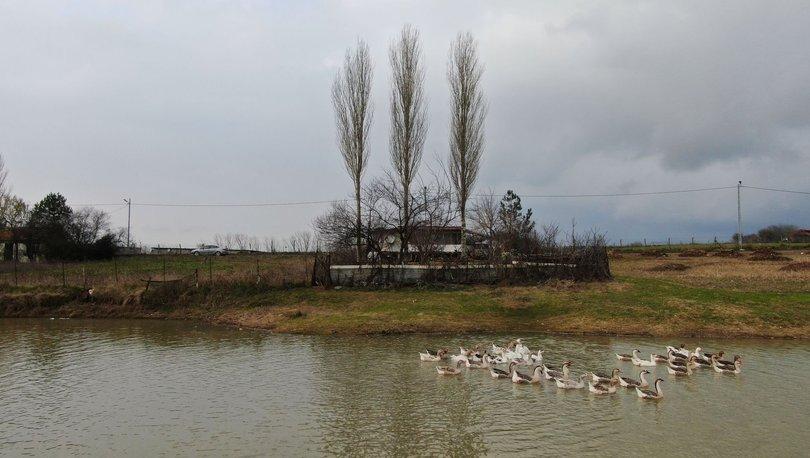 Küçük Şamlar Gölü