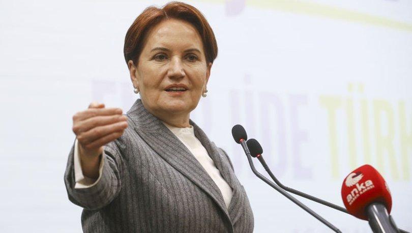 İYİ Parti lideri Meral Akşener'den partililere çağrı