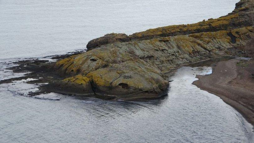 Timsah Adası