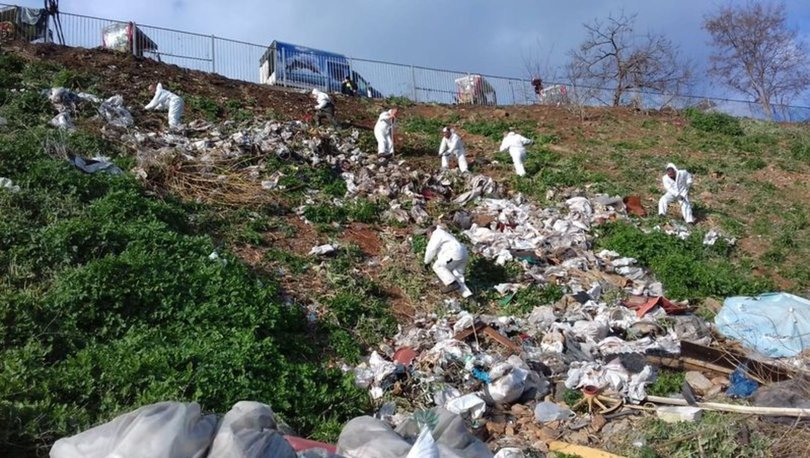 Adalar'da fayton temizliği