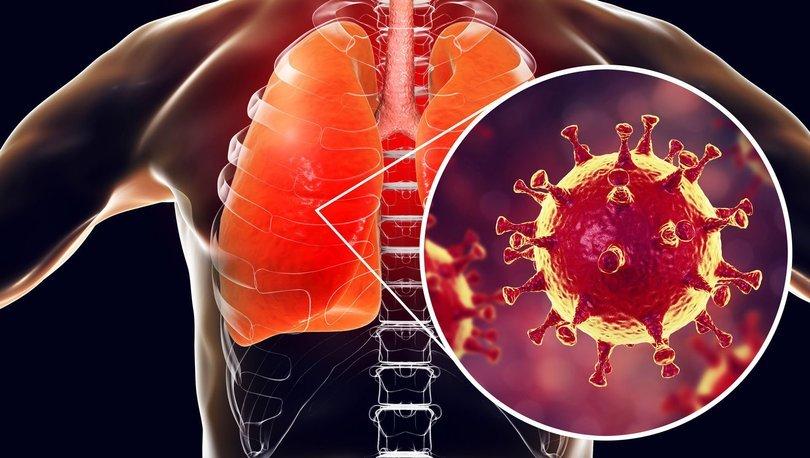 Koronavirüs salgını