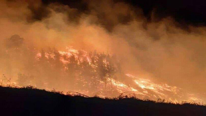 Adana'da iki farklı noktada orman yangını