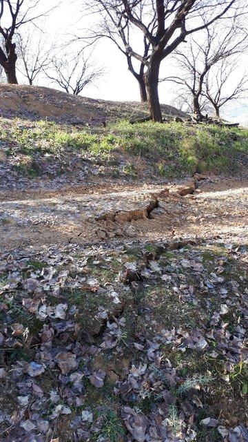 İşte Elazığ depreminin doğadaki tahribatı!