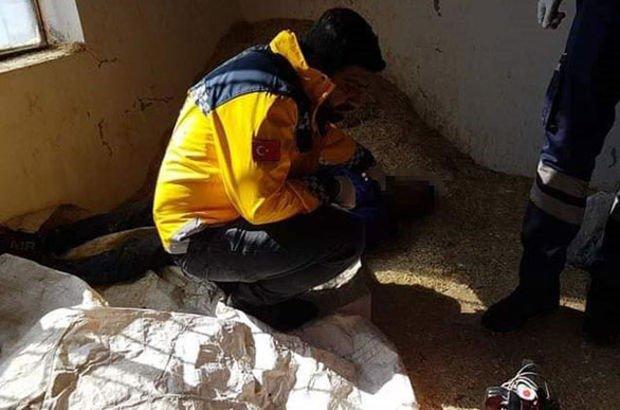 4 kaçak göçmenden 1'i donarak öldü!