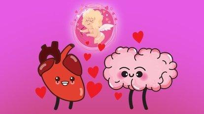 Aşk beyinde mi kalpte mi başlar?