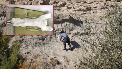 Veterinerin bulduğu 7.5 milyon yıllık fosil