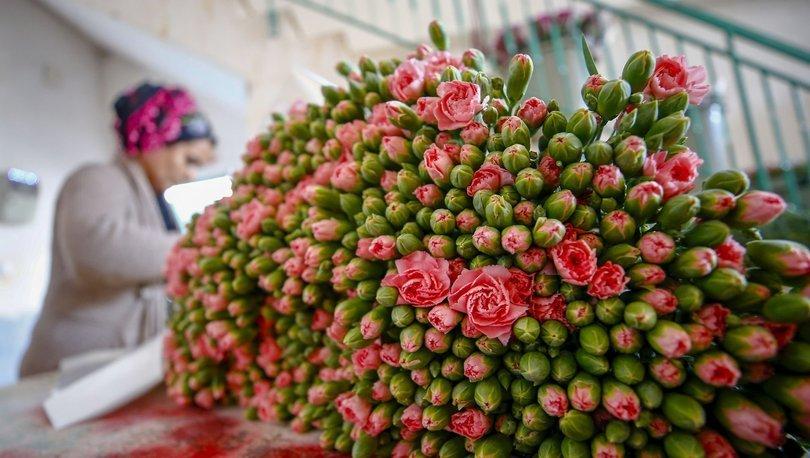 Türk çiçeğinde dünya kadınlar günü bereketi