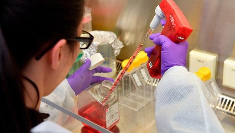 Belçikalı bilim insanları koronavirüse karşı tedavi arayışında ilerleme sağladıklarını açıkladı