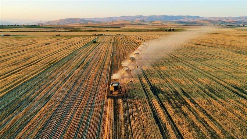 Tarımsal destek ödemesi