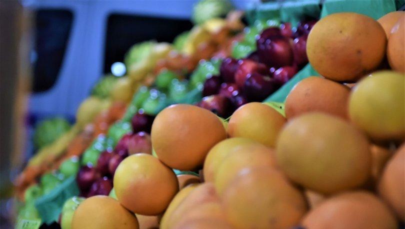 yaş sebze ve meyve ihracatı