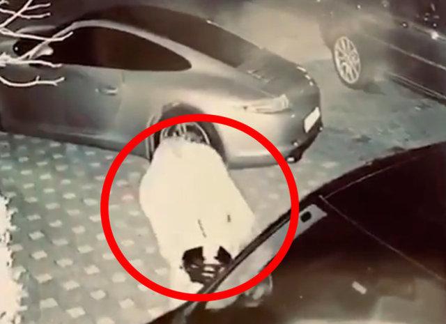 İşte Ece Erken'in sevgilisi! Ece Erken'in videosunu izleyince şok oldum' - Magazin haberleri