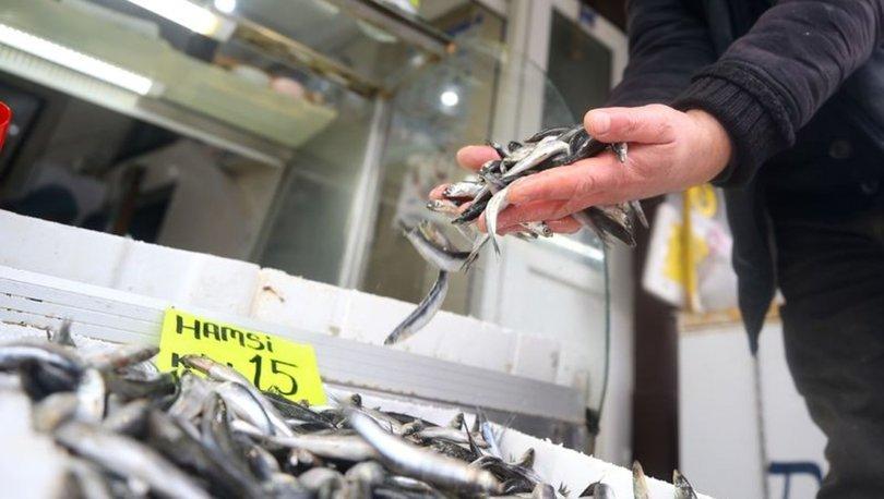 Karadeniz'de balıkçılar, sezonu erken kapatıyor