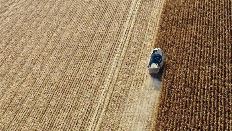 Tarımsal üretime düşük faizli kredi