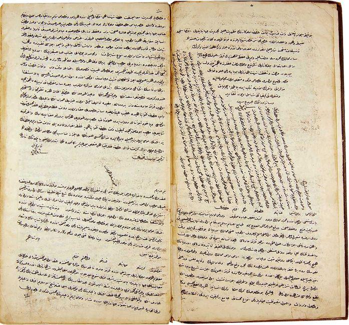 Karantina Defteri'nin bir sahifesi. (Osmanlı Arşivi, BEO.AYN.d.1714-3).