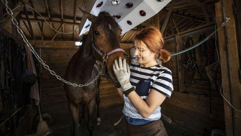 At sevgisi ağır basınca nalbantlığa gönül verdi